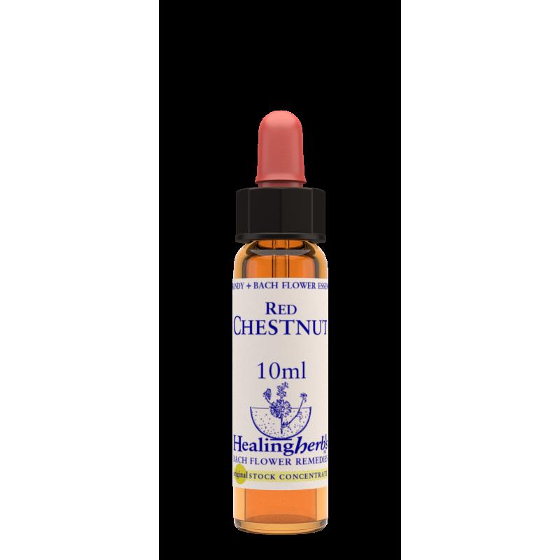 Sārtā zirgkastaņa / Red Chestnut, 10 ml