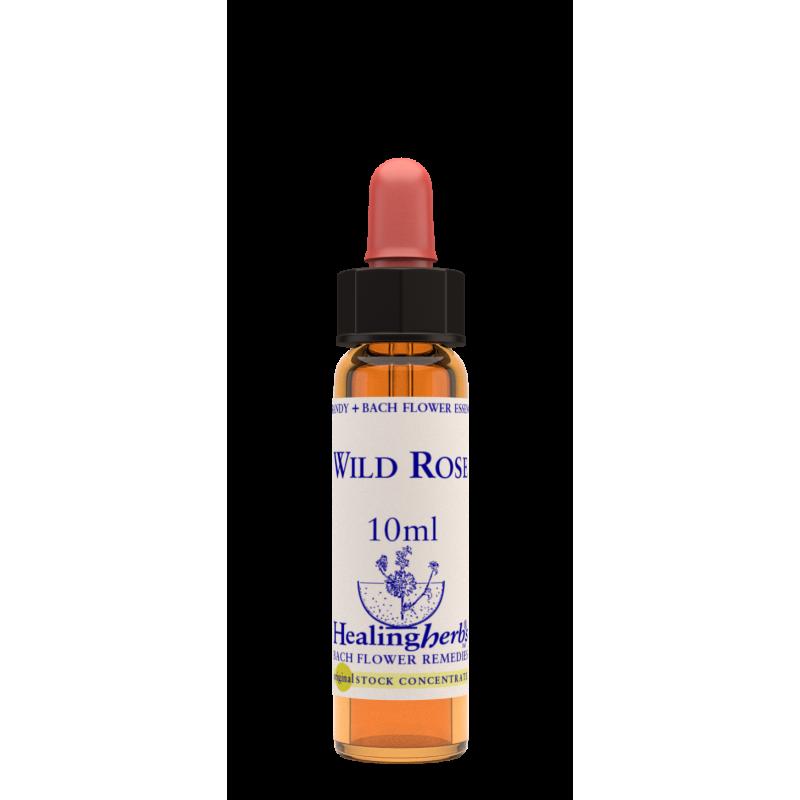 Suņu roze / Wild Rose, 10 ml