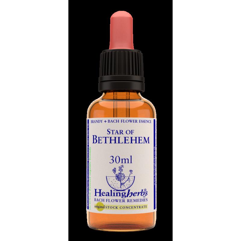 Baltstarīte / Star of Bethlehem, 30 ml