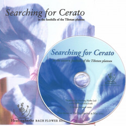 """DVD """"Searching for Cerato"""""""