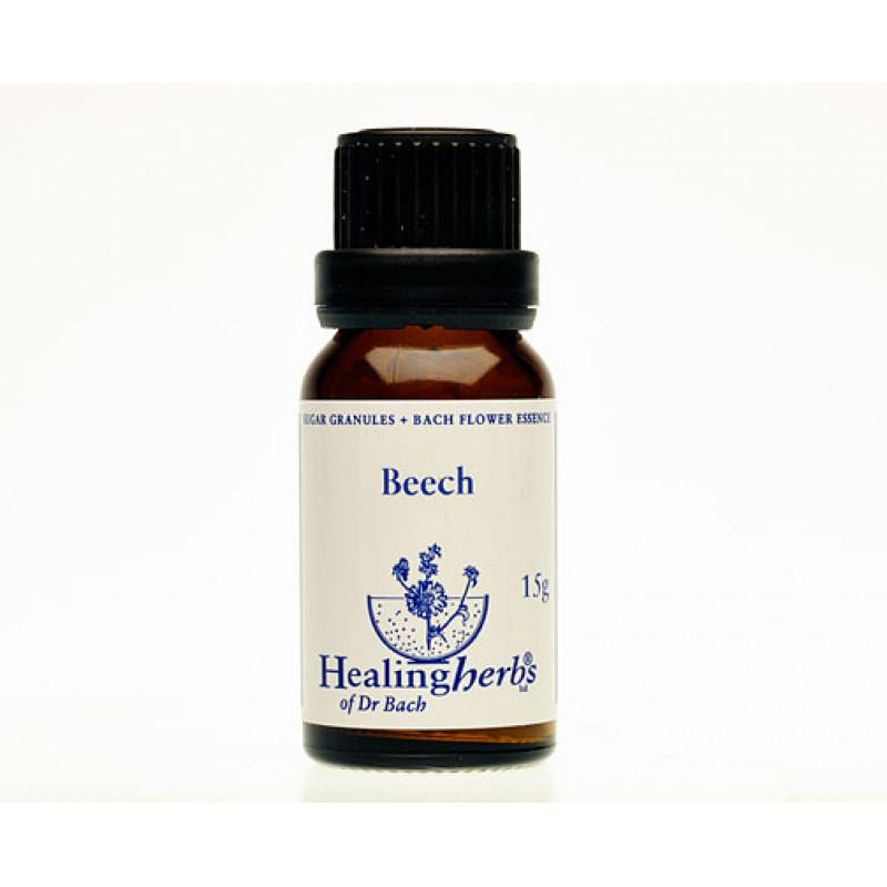 Dižskābardis / Beech, 15 g