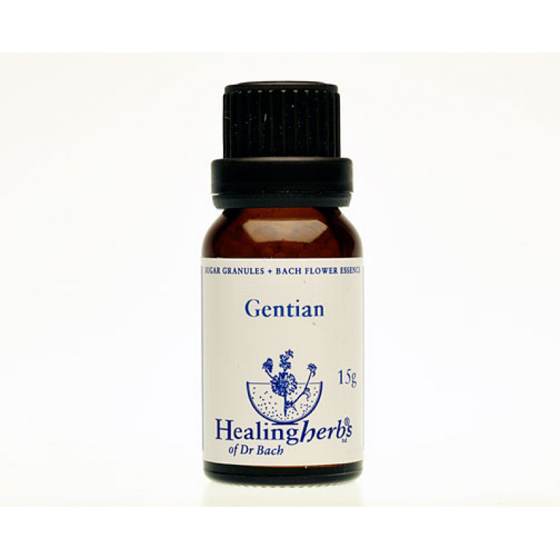 Drudzenīte / Gentian, 15 g