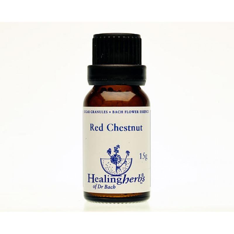 Sārtā zirgkastaņa / Red Chestnut, 15 g