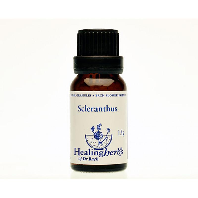 Žultszālīte / Scleranthus, 15 g