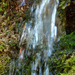 Avota ūdens / Rock Water, 30 ml